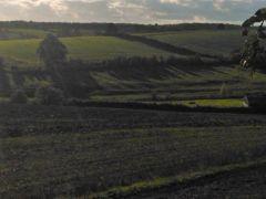 Bramshill's Valley