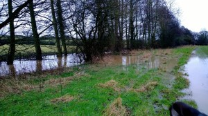 Sor Brook flooding Jan 2014