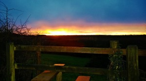 Sunset over Bramshill Jan 2014