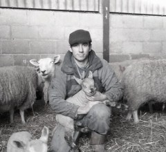 GFD lambing at Hadsham Farm