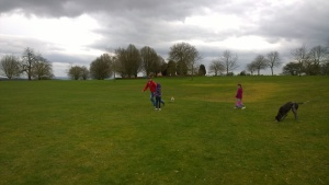 Playing tig on Castle Howard's cricket pitch