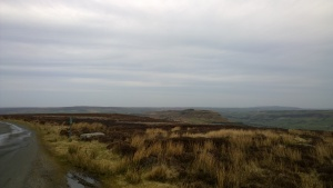 Danby High Moor, North Yorkshire (2)